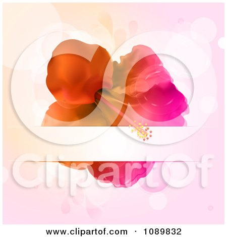 Clipart 3d Gradient Hibiscus Flower With A Text Bar Over Flares - Royalty Free Vector Illustration by elaineitalia