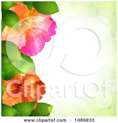 Clipart 3d Hibiscus Flowers And Leaves Border Over Green With Flares - Royalty Free Vector Illustration by elaineitalia