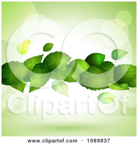 Clipart 3d Floating Green Plant Leaves Over Flares With Copyspace - Royalty Free Vector Illustration by elaineitalia