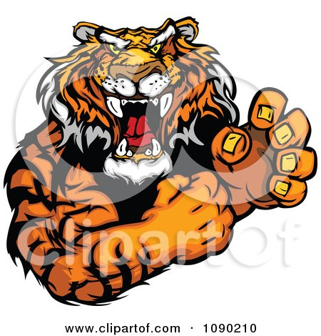 Clipart Fighting Tiger Mascot With Fists - Royalty Free Vector Illustration by Chromaco