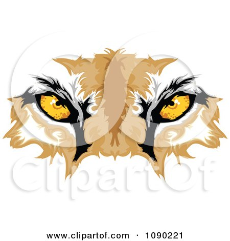Cougar Mascot Eyes Posters, Art Prints