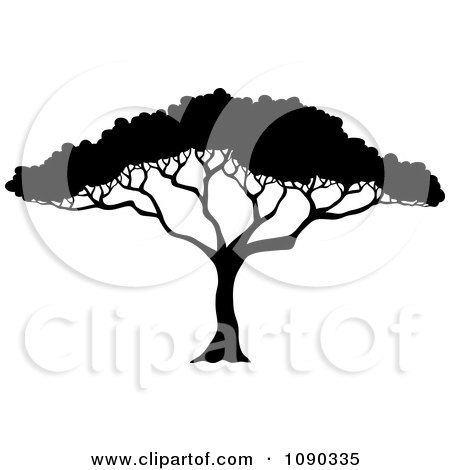 Clipart Silhouetted Acacia Tree With Lush Foliage - Royalty Free Vector Illustration by visekart