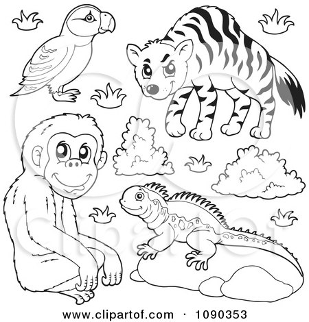 Clipart Outlined Puffin Monkey Lizard And Hyena Zoo Animals - Royalty Free Vector Illustration by visekart
