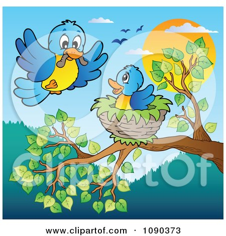 Clipart Blue Bird Delivering A Worm To A Young One In A Tree Nest - Royalty Free Vector Illustration by visekart