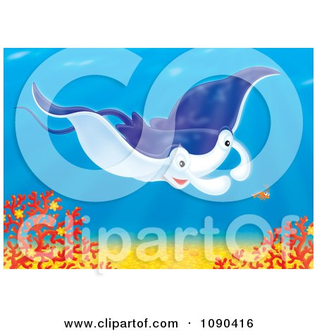 Clipart Blue Mantaa Ray Swimming Over Corals With A Shrimp - Royalty Free Illustration by Alex Bannykh