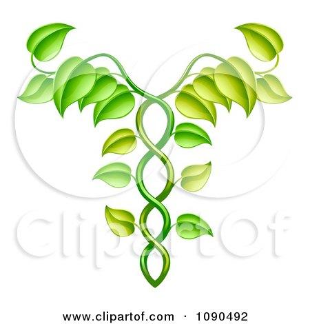 Green Vine Forming An Alternative Medicine Caduceus Posters, Art Prints