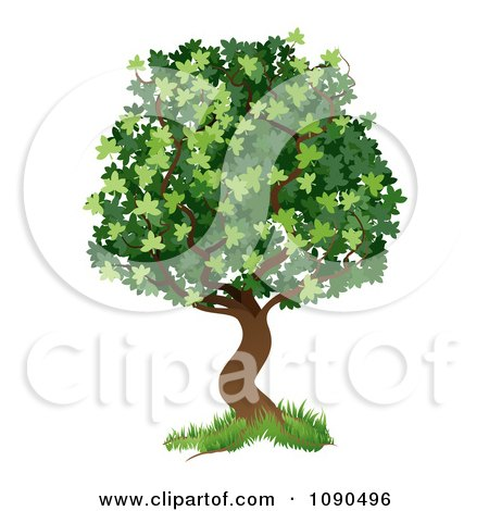 Clipart Green Tree With Grass At The Base - Royalty Free Vector Illustration by AtStockIllustration