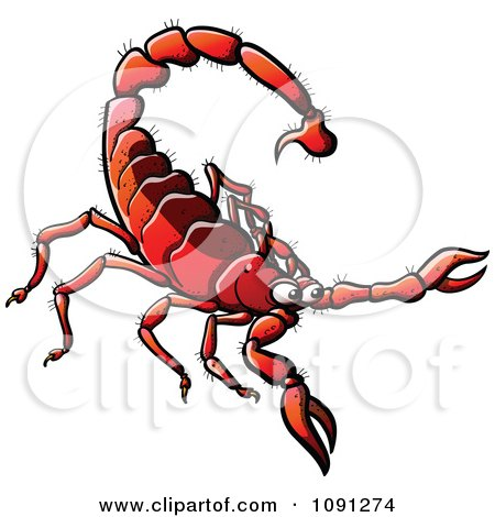 Clipart Red Scorpion - Royalty Free Vector Illustration by Zooco