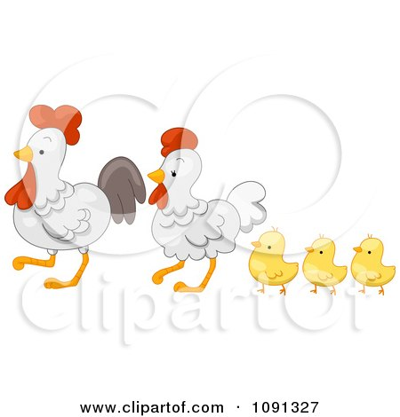 Clipart Cute Chicken Family Walking - Royalty Free Vector Illustration by BNP Design Studio