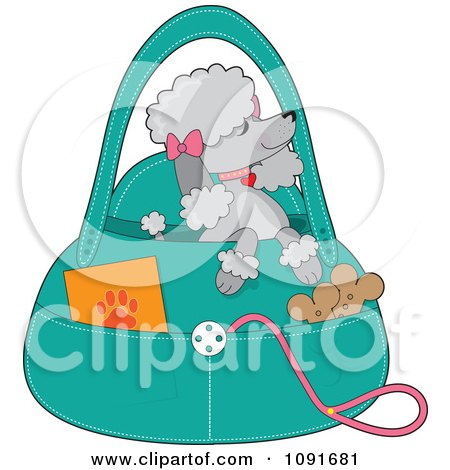 Clipart Prissy Gray Poodle Waiting In A Purse - Royalty Free Vector Illustration by Maria Bell