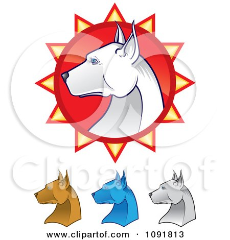 Clipart White Pit Bull Head In Profile Over A Red Burst And Brown Blue And Ivory Heads Below - Royalty Free Vector Illustration by Paulo Resende