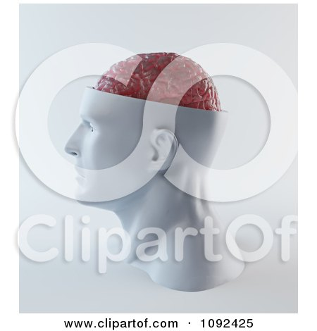 Clipart 3d Head With A Visible Pink Brain - Royalty Free CGI Illustration by Mopic