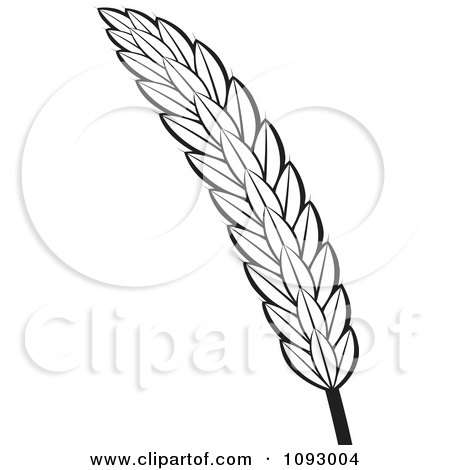 Clipart Black And White Strand Of Wheat - Royalty Free Vector Illustration by Lal Perera