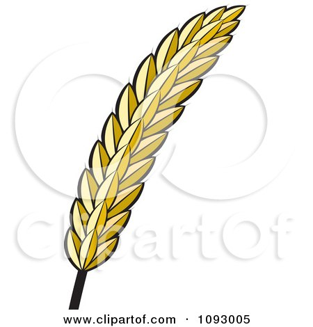 Clipart Golden Strand Of Wheat - Royalty Free Vector Illustration by Lal Perera