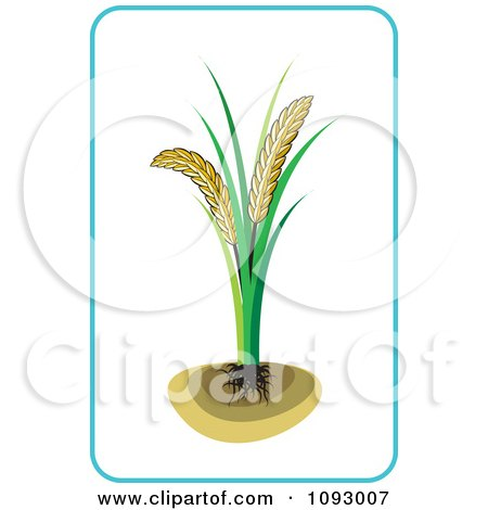 Clipart Wheat Plant And Blue Frame - Royalty Free Vector Illustration by Lal Perera