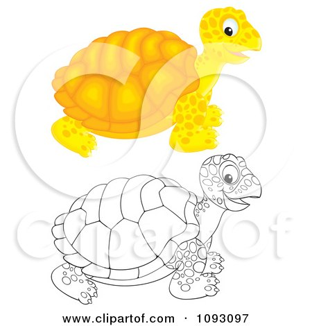 Clipart Happy Colored And Outlined Tortoises - Royalty Free Illustration by Alex Bannykh