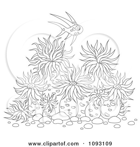 Sea anemone coloring pages clipart outlined fish over sea for Daisy head mayzie coloring pages