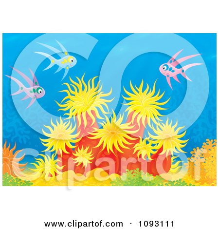 Clipart Pink And Blue Fish Over Sea Anemones On A Reef - Royalty Free Illustration by Alex Bannykh