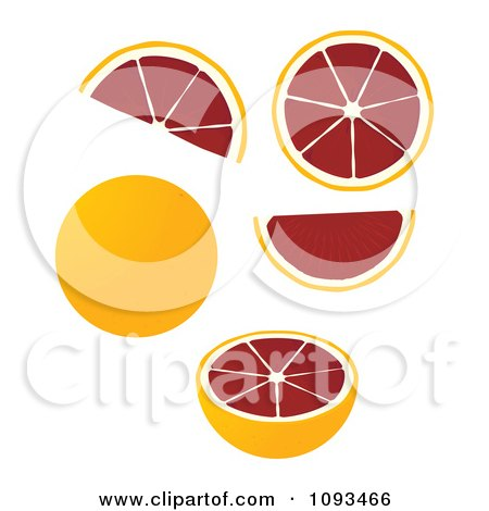 Clipart Blood Oranges - Royalty Free Vector Illustration by Randomway