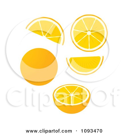 Clipart Oranges - Royalty Free Vector Illustration by Randomway