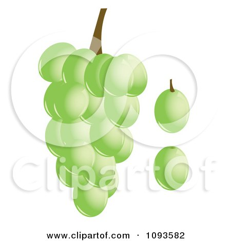 Clipart Green Grapes - Royalty Free Vector Illustration by Randomway