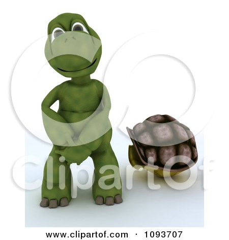 3d Naked Tortoise Out Of His Shell Posters Art Prints By