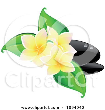 Clipart Black Hot Massage Stones And Yellow Frangipani Flowers With Leaves - Royalty Free Vector Illustration by Vector Tradition SM