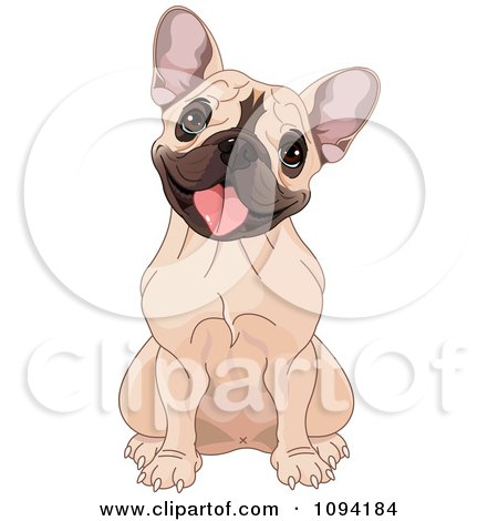 Clipart Cute French Bulldog Sitting And Cocking Its Head - Royalty Free Vector Illustration by Pushkin