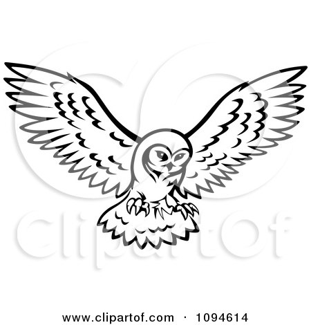 Black and white owl in flight posters art prints