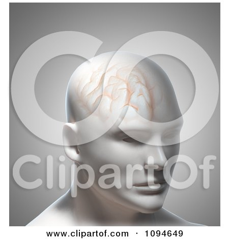 Clipart 3d Male Head With Brain Texture - Royalty Free CGI Illustration by Mopic