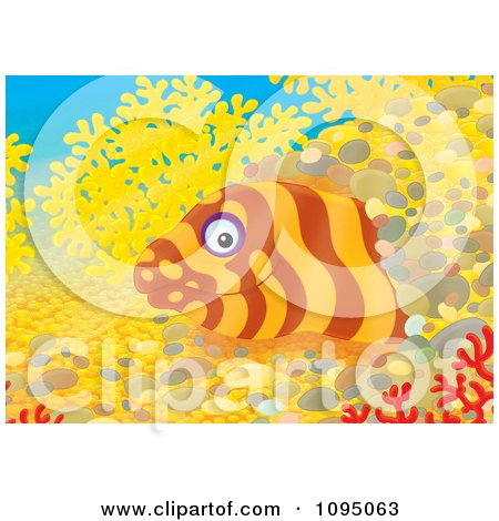 Clipart Moray Eel Peeking From A Hole In A Reef - Royalty Free Illustration by Alex Bannykh