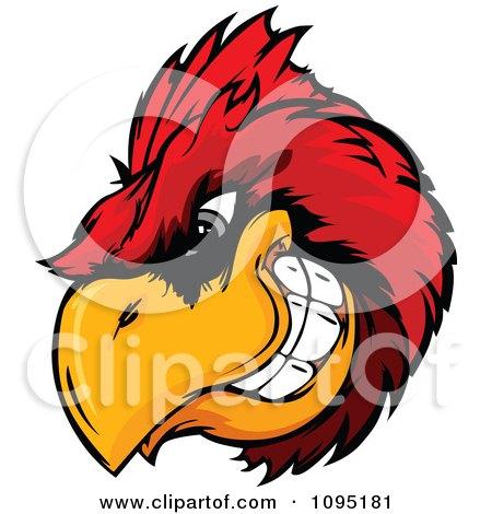 Free Vector Illustration on Cardinal Mascot Head   Royalty Free Vector Illustration By Chromaco