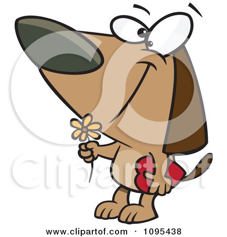 Clipart Cartoon Courting Valentines Day Dog With A Flower And Candy Box - Royalty Free Vector Illustration by toonaday