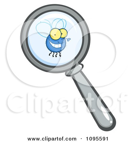 Clipart Magnifying Glass Zooming In On A Fly - Royalty Free Vector Illustration by Hit Toon