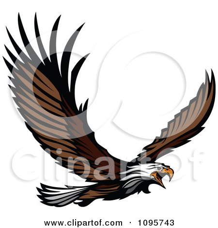 Clipart Wild Bald Eagle Flying With Spread Wings - Royalty Free Vector Illustration by Chromaco