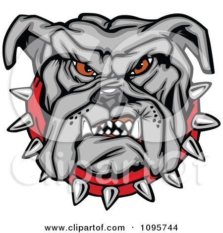 Clipart Tough Gray Bulldog Face With A Red Spiked Collar - Royalty Free Vector Illustration by Chromaco