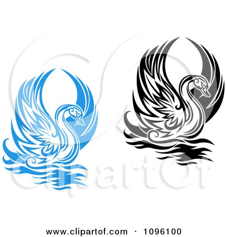 Clipart Black And White And Blue Graceful Swans Raising Their Wings - Royalty Free Vector Illustration by Vector Tradition SM