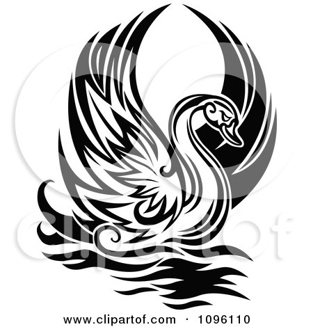 Clipart Lone Black And White Graceful Swan Raising Its Wings - Royalty Free Vector Illustration by Vector Tradition SM