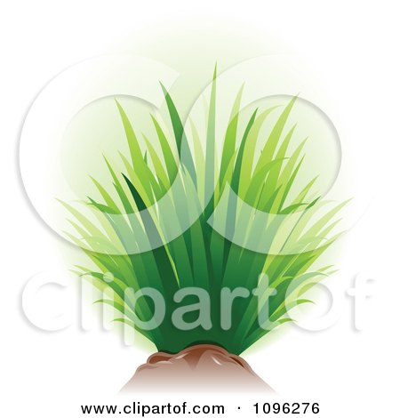 Clipart Tuft Of Green Grass And Soil - Royalty Free Vector Illustration by TA Images