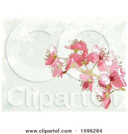 Clipart Background Of Pink Blossoms And Gray Grunge - Royalty Free Vector Illustration by Pushkin