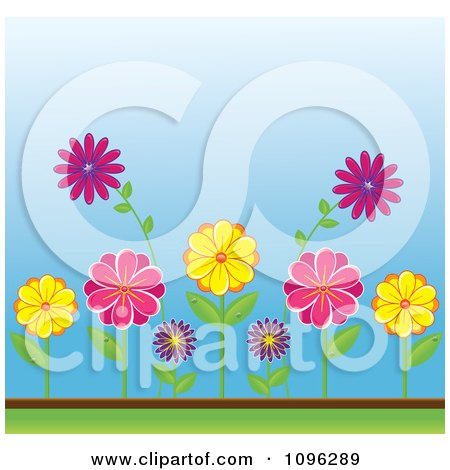 Clipart Colorful Spring Daisy Flowers In A Garden - Royalty Free Vector Illustration by Pams Clipart