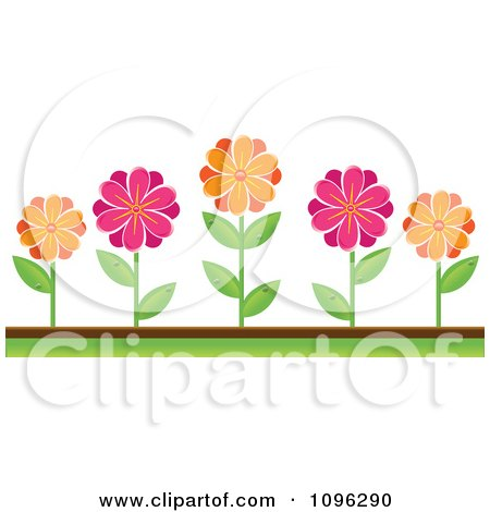 Picture Flower Beds on Clipart Pink And Orange Daisies In A Flower Bed   Royalty Free Vector