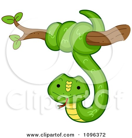 Clipart Happy Green Snake Coiled Around A Tree Branch - Royalty Free Vector Illustration by BNP Design Studio