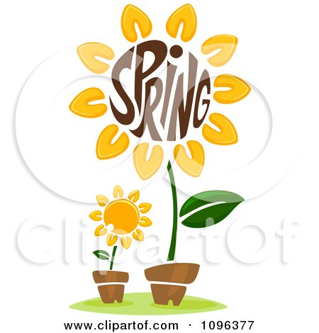 Clipart The Word Spring In A Sunflower Center - Royalty Free Vector Illustration by BNP Design Studio