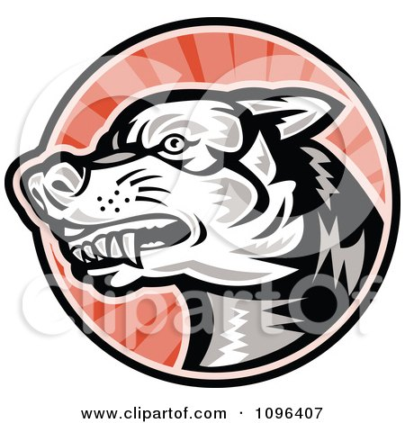 Clipart Retro Woodcut Angry Dog Over Red Rays - Royalty Free Vector Illustration by patrimonio