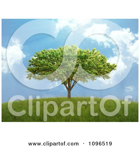 Clipart 3d Lone Tree On A Hill With A Blue Sky And Sunshine - Royalty Free CGI Illustration by Mopic