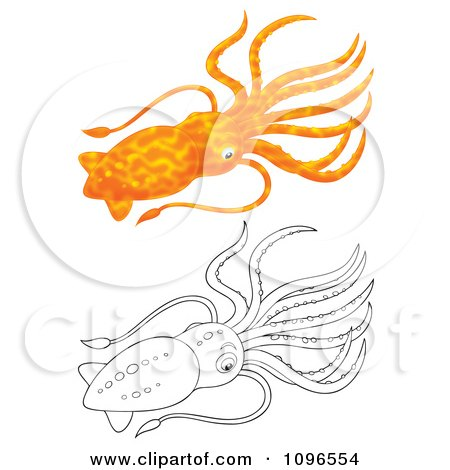 Clipart Orange And Black And White Squid - Royalty Free Illustration by Alex Bannykh