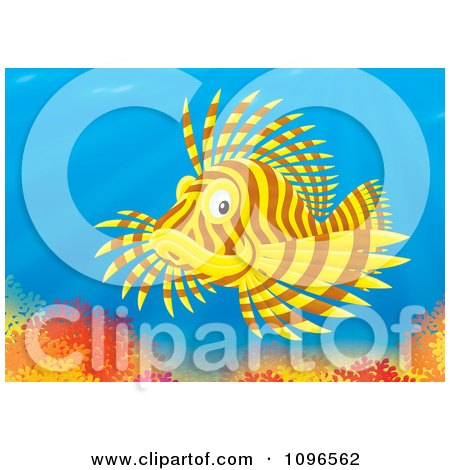Clipart Brown And Yellow Lion Fish Over A Coral Reef - Royalty Free Illustration by Alex Bannykh