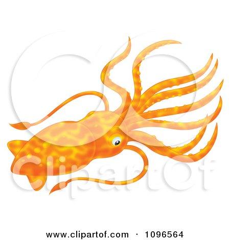 Clipart Orange Squid - Royalty Free Illustration by Alex Bannykh