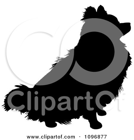 Clipart Black And White Sitting Pomeranian Dog - Royalty Free Vector Illustration by Maria Bell